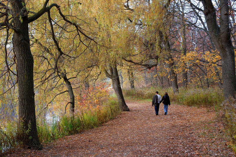 Park with fall colors royalty free stock images