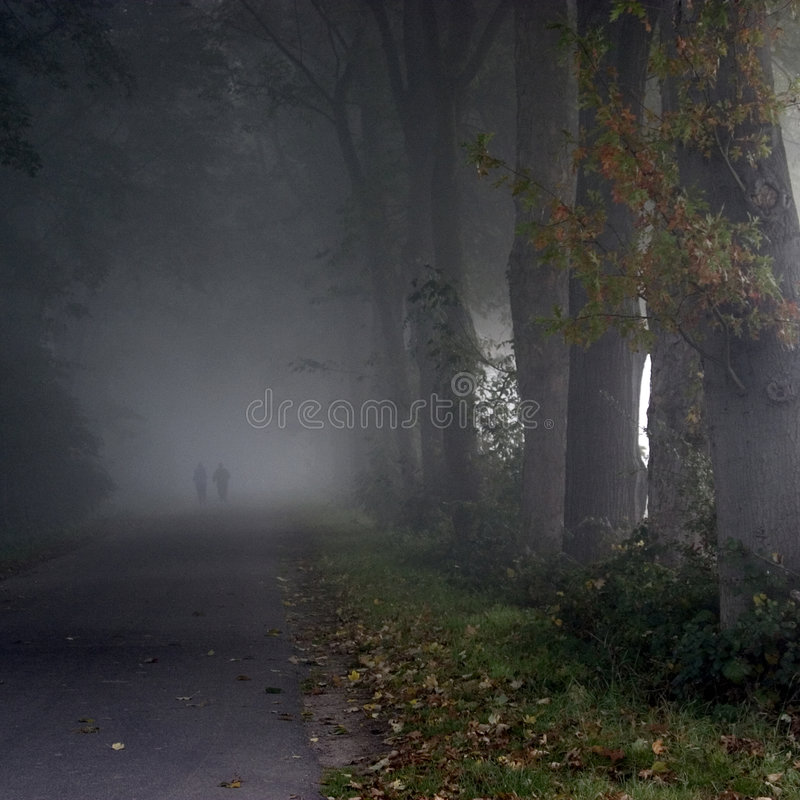 Download Park In The Fog Royalty Free Stock Images - Image: 6515009