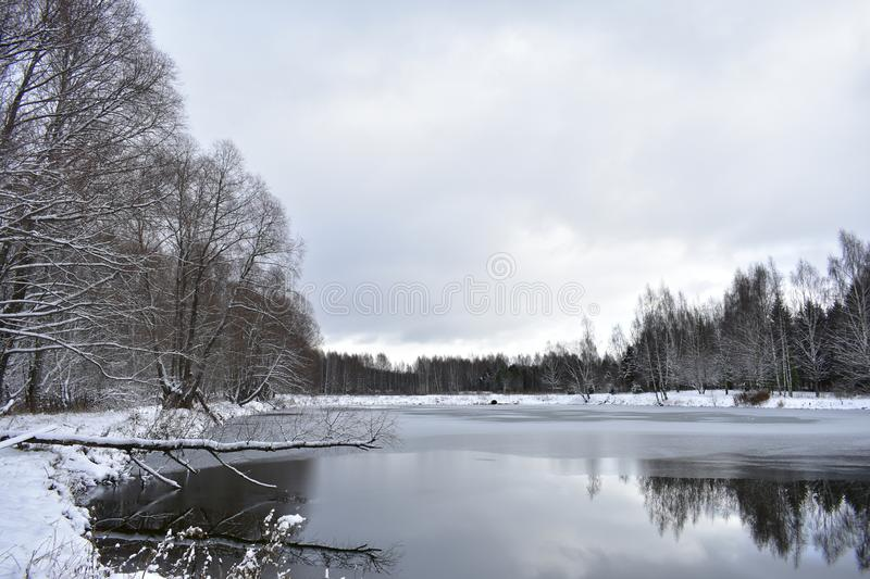 Park forest pond water ice surface reflects the sky clouds. .Trees in winter silver. The forest was magically transformed. Trees royalty free stock images