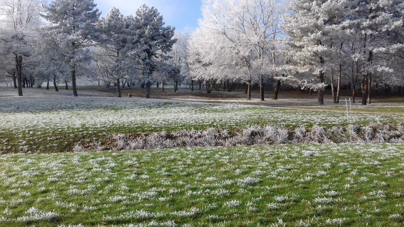 Park françe stock fotografie