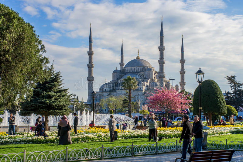 The Park in front of the Blue mosque in the spring royalty free stock images