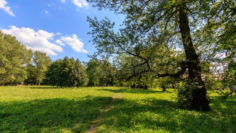 Park Garden Plaszow, Krakow, Poland royalty free stock photos