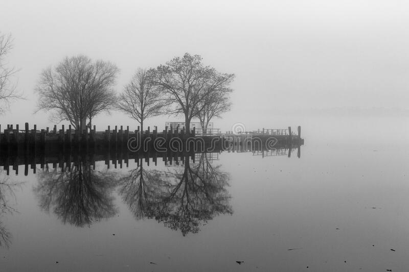 Tree-Line Park in New York Covered in Fog royalty free stock images
