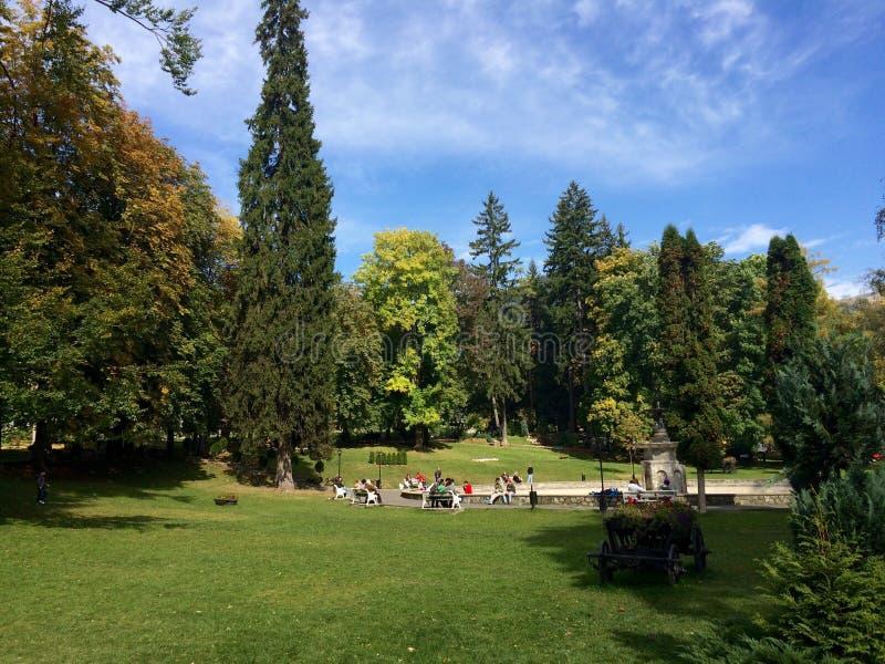 Park i berg royaltyfri bild