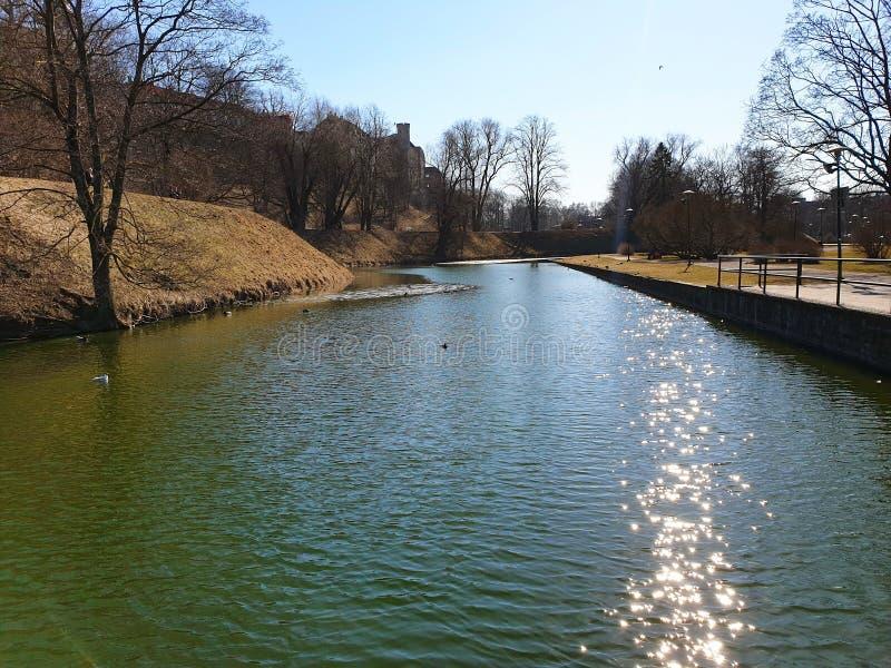 Park im blauen Himmel der Stadtnaturwasserreflexion in den Baumenten des grünen Grases des Sees schwimmen in der See alten Stadt  lizenzfreies stockbild
