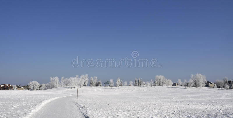 Park im Winter lizenzfreies stockfoto