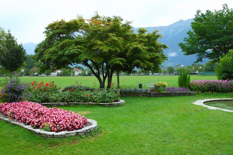 Park in Interlaken royalty free stock photos