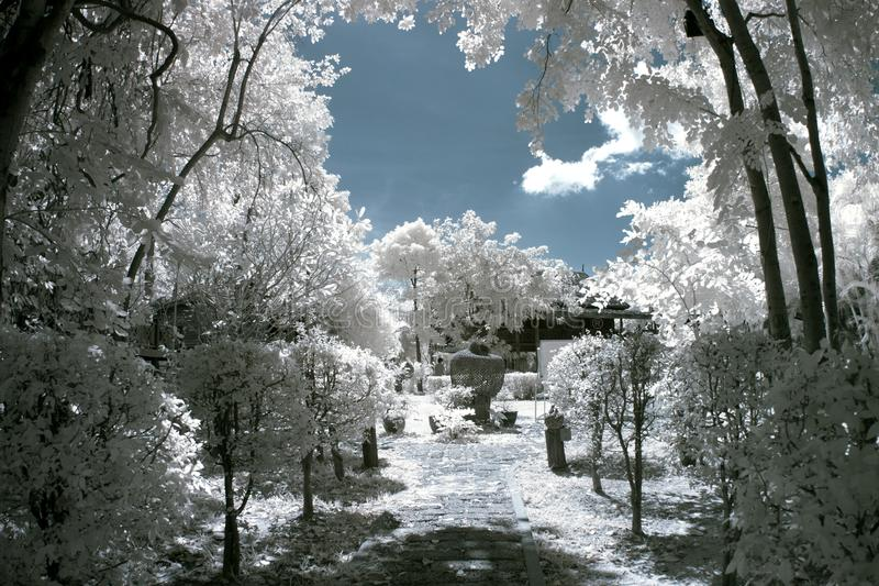 The park with IR stock images