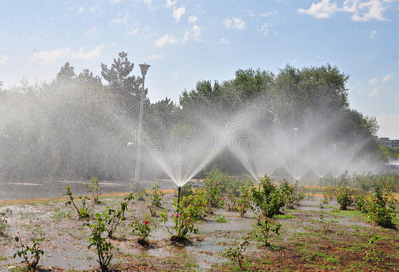 Download Park irrigation stock image. Image of countryside, area - 25871823