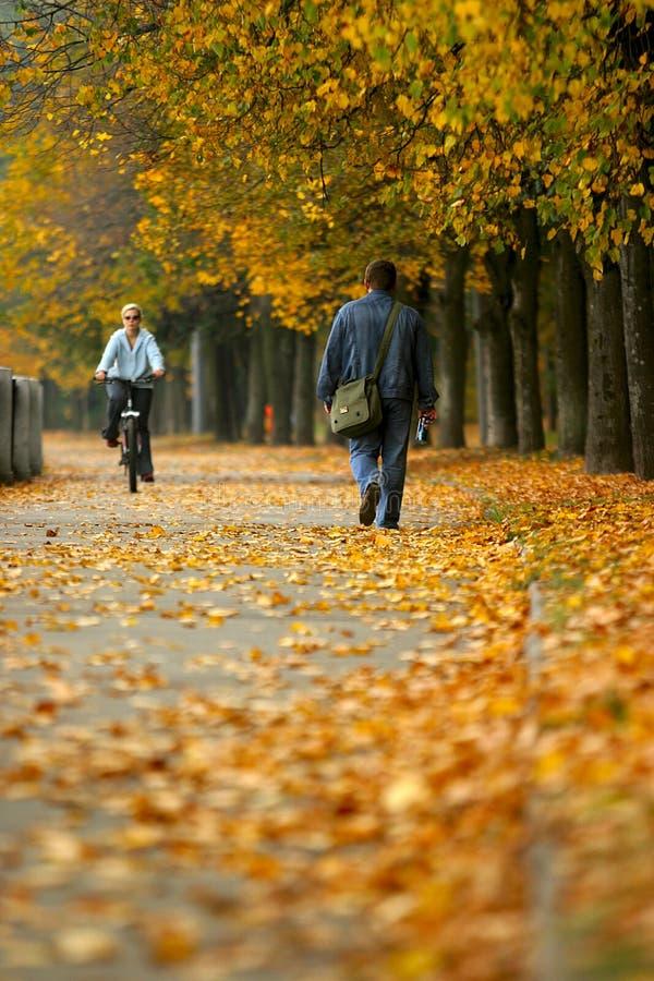 park jesieni walk zdjęcia royalty free