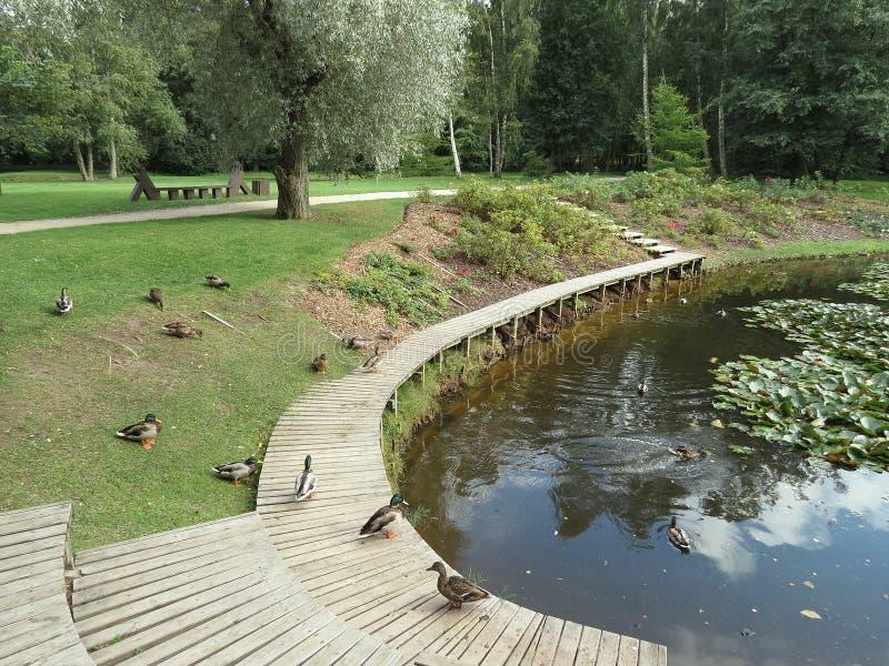 Park In Latvia Royalty Free Stock Photos