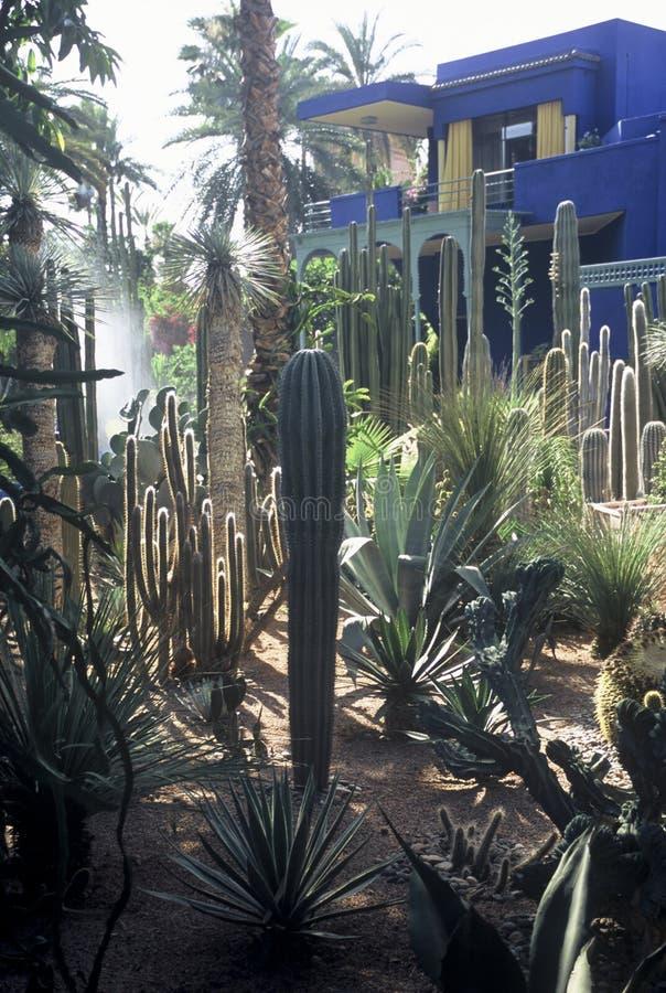 Park in Marrakech, Marokko stock fotografie
