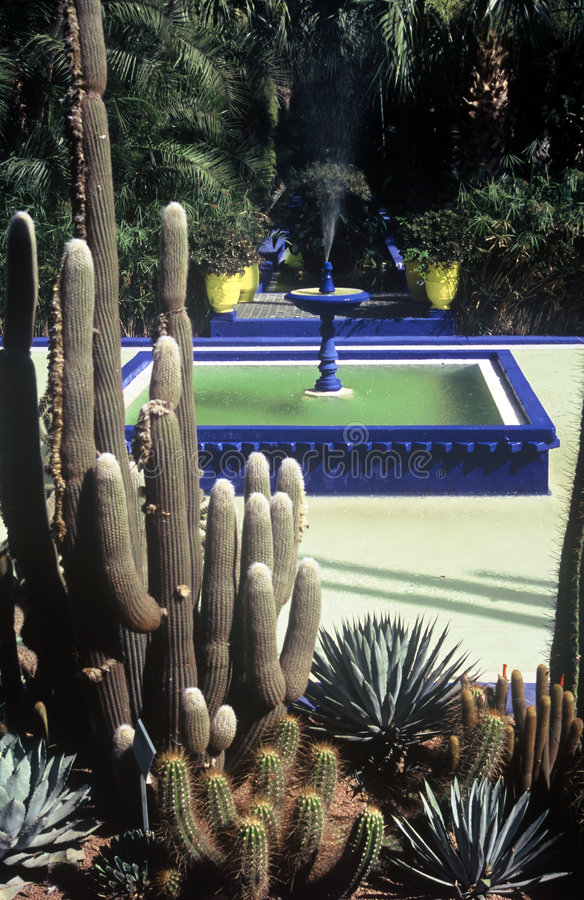 Park in Marrakesh,Morocco. Park Majorelle in Marrakesh,Morocco royalty free stock photo