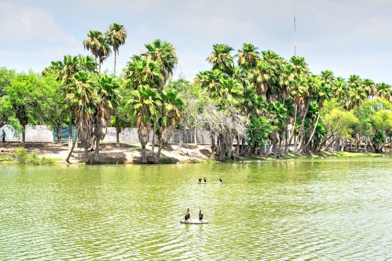 Park in Matamoros, Mexico royalty-vrije stock foto's