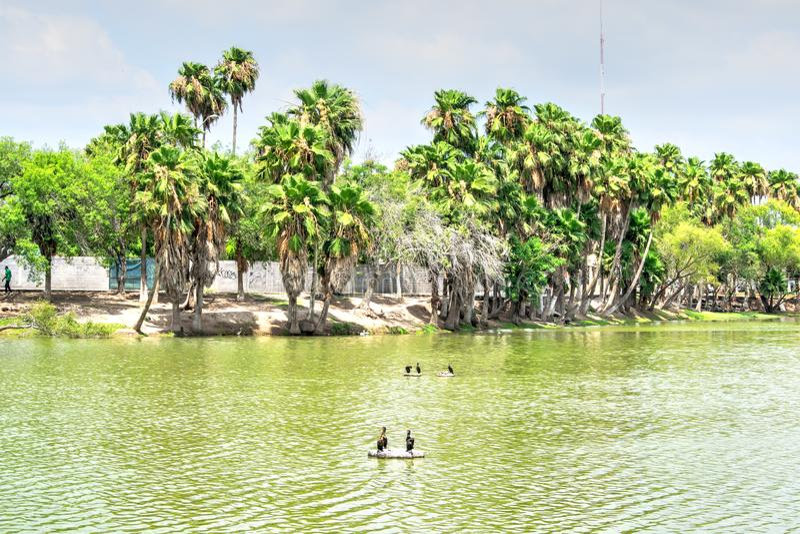 Park in Matamoros, Mexiko lizenzfreie stockfotos