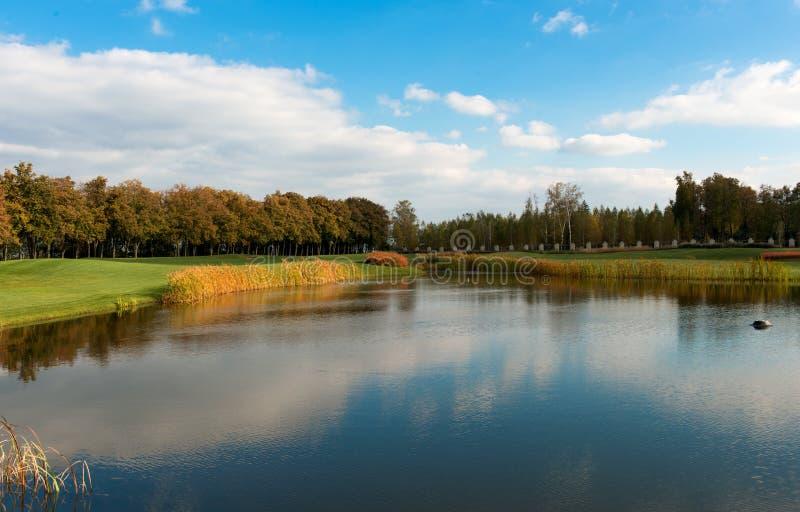Park met een golfcursus stock afbeelding