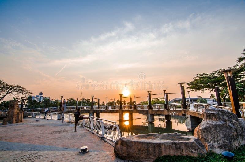 Park met zon royalty-vrije stock foto