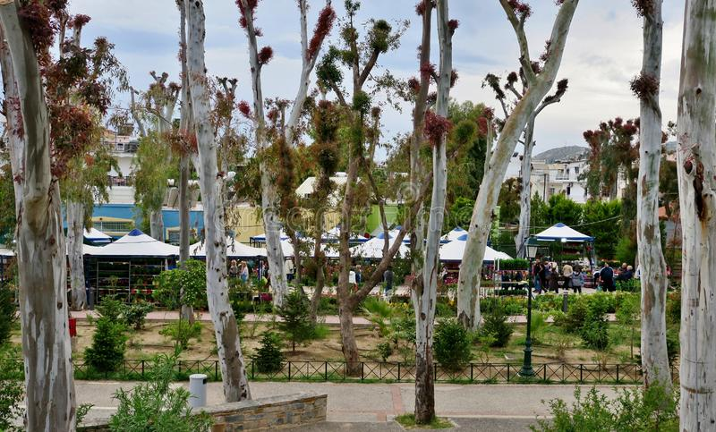 Park mit hohen Bäumen mit dem Leute- und Caféstillstehen lizenzfreie stockfotografie