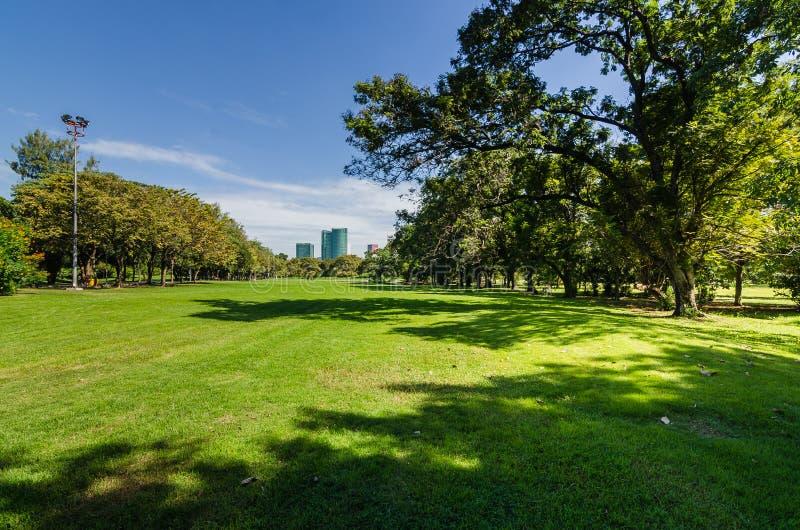 Park mit Schatten des grünen Baums lizenzfreies stockfoto