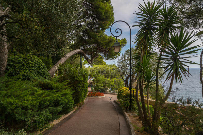 A Park in Monaco. A scenic park on the cliffs of Monte Carlo in the principality of Monaco royalty free stock images