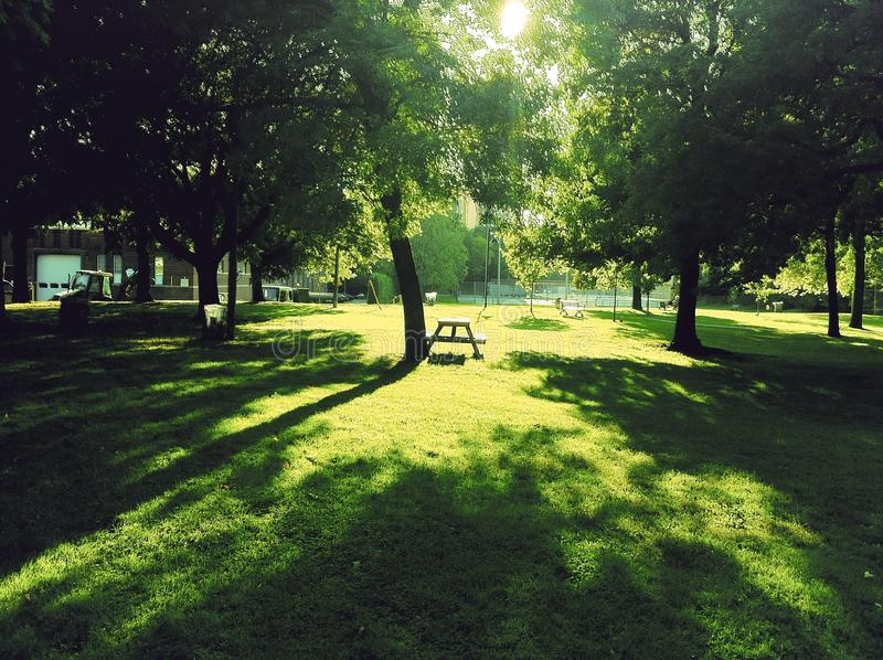 Park am Nachmittag stockfoto