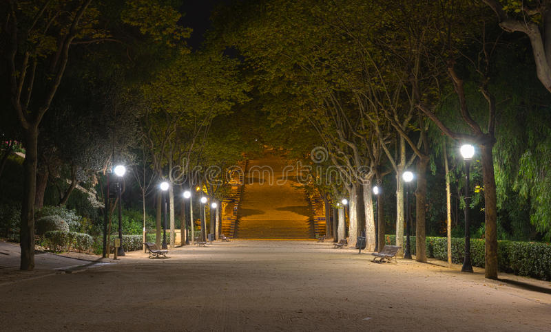 Park nachts lizenzfreie stockfotos