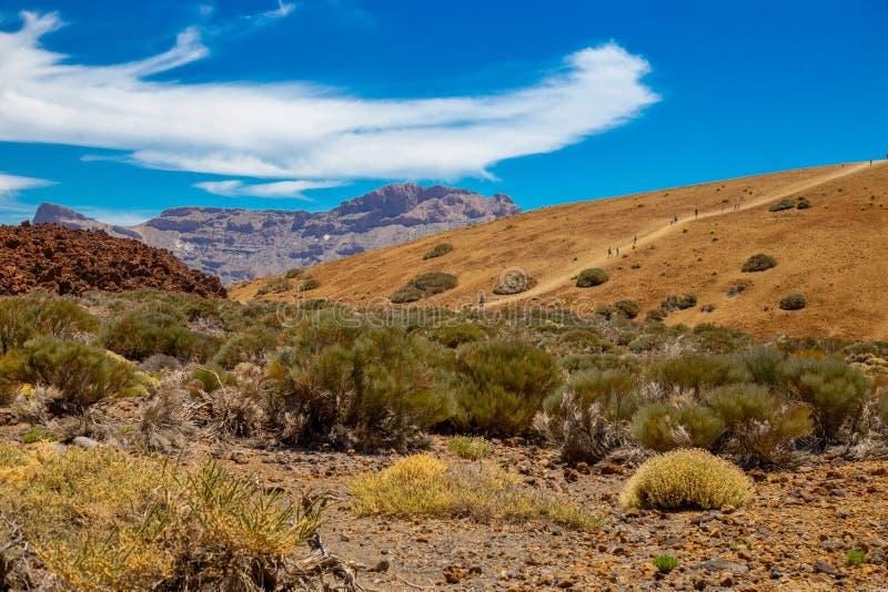Park Narodowy Del Teide, widok magiczny park obrazy stock