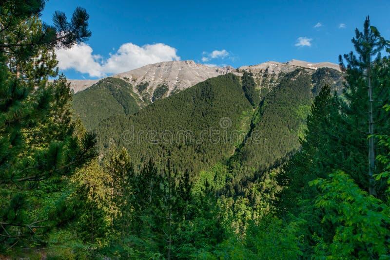 Park Narodowy góra Olympus w Grecja zdjęcie stock