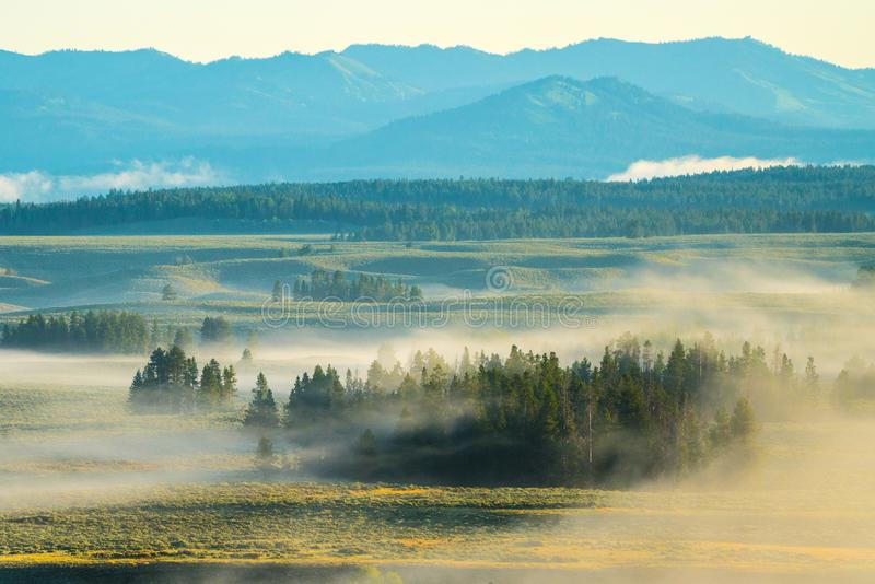 Park Narodowy Heavy Mist in Grand Teton fotografia royalty free