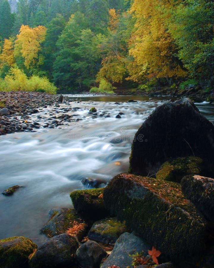 park narodowy jesienią Yosemite obrazy stock
