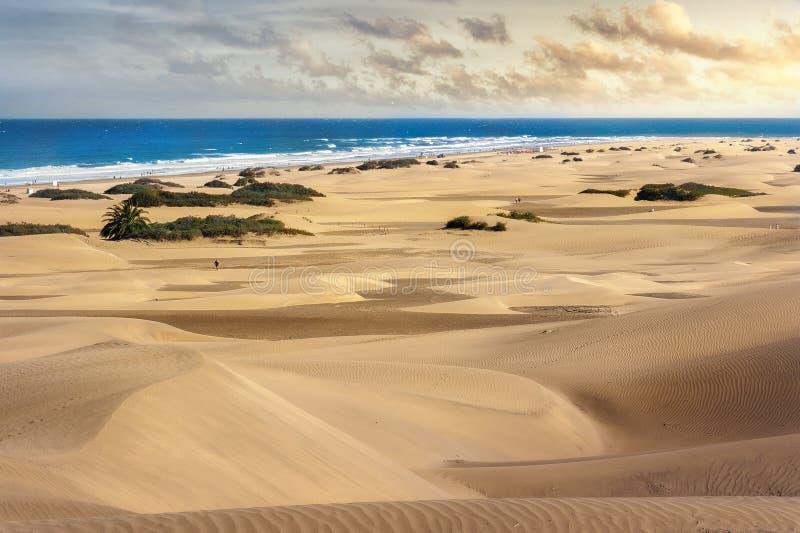 Park Narodowy Maspalomas piaska diuny Gran Canaria, kanarek isl obraz stock