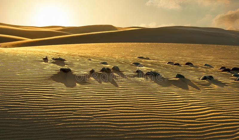 Park Narodowy Maspalomas piaska diuny Gran Canaria, kanarek isl fotografia stock