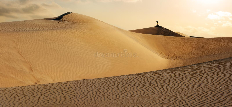 Park Narodowy Maspalomas piaska diuny Gran Canaria, kanarek isl zdjęcie royalty free