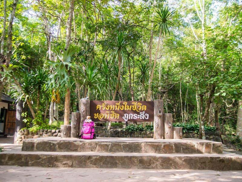 Park Narodowy Phu Kradueng w dystrykcie Phu Kradueng, Loei, Tajlandia obrazy stock