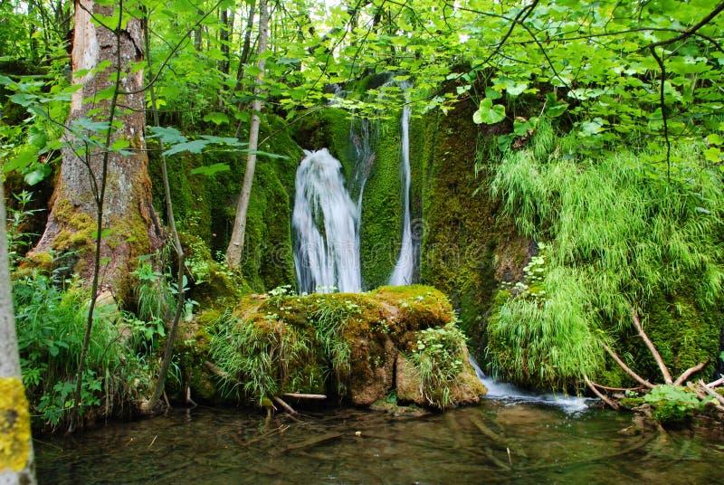 park narodowy plitvice zdjęcie stock
