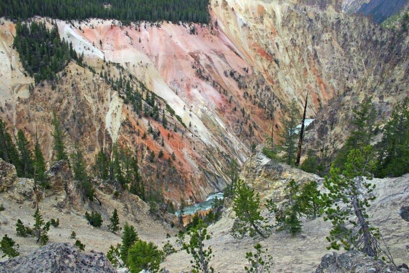 park narodowy rzeka Yellowstone zdjęcie royalty free