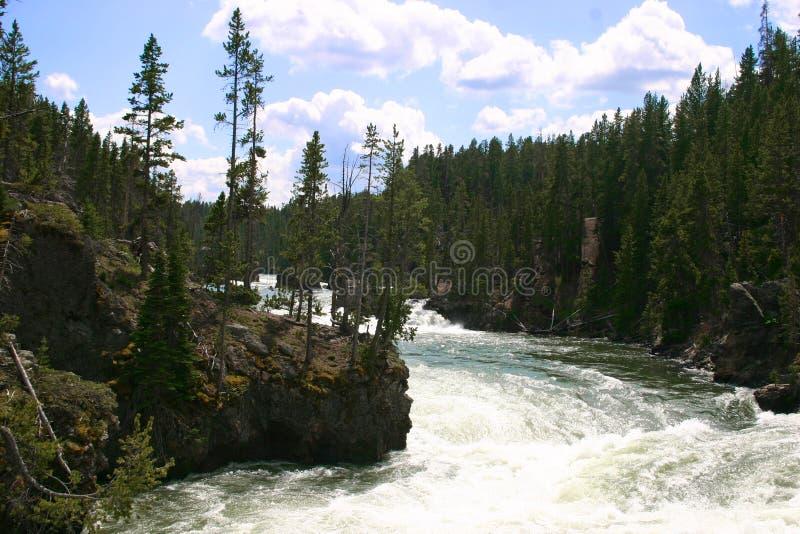 park narodowy rzeka Yellowstone obraz royalty free