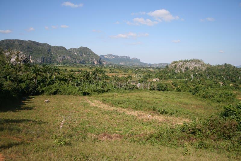 park narodowy vinales obraz stock