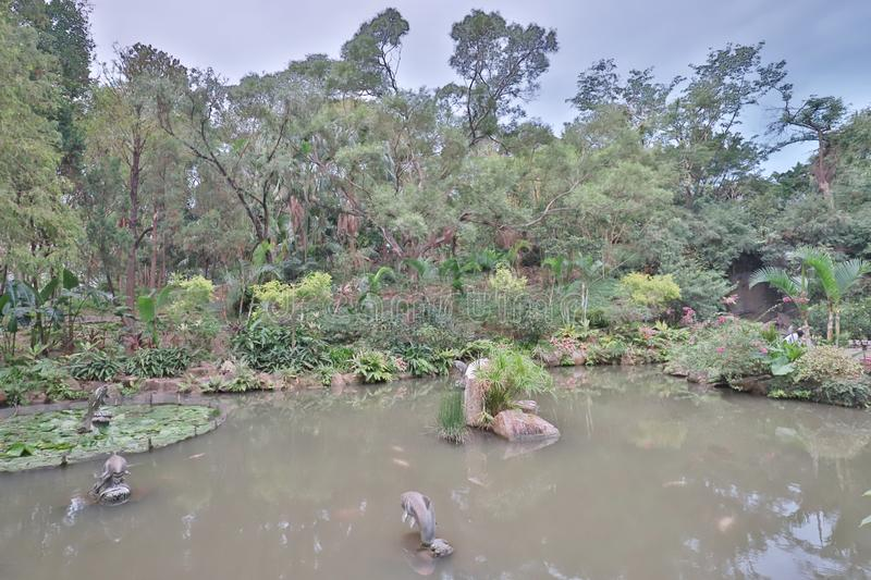 A Park in the New Territories sha tin. Park in the New Territories sha tin royalty free stock photo