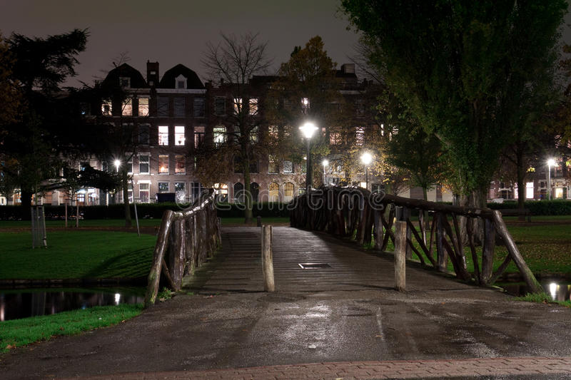Park in the night. A park in the night on autumn stock photos