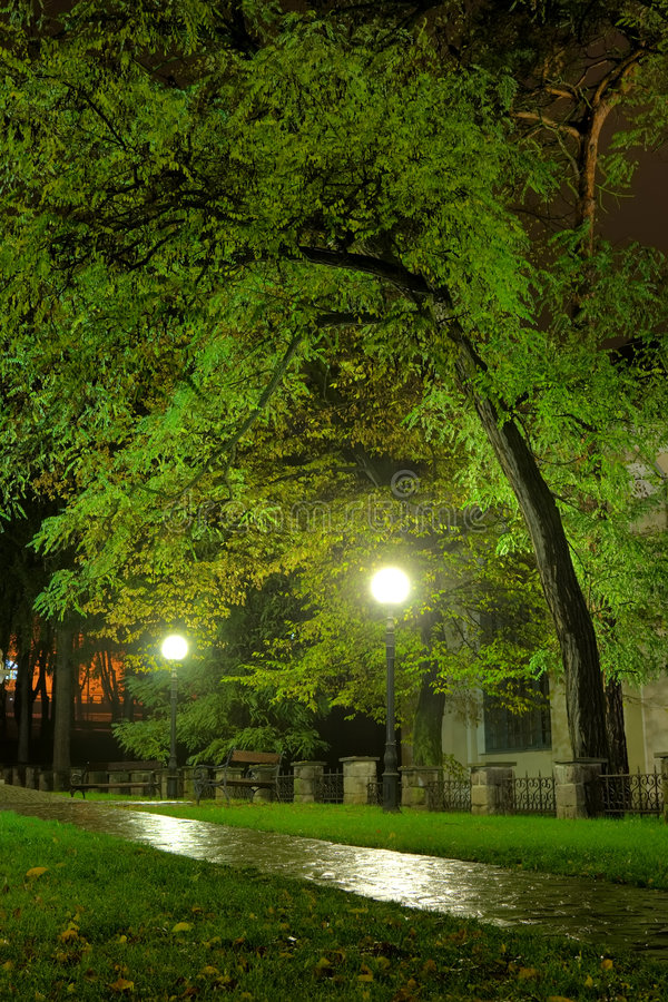 Download Park in the night stock photo. Image of light, night, city - 3609690