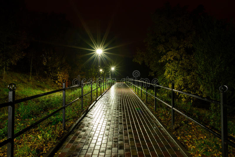 Park night lanterns lamps: a view of a alley walkway, pathway in a park with trees and dark sky as a background at an summer eveni royalty free stock photography