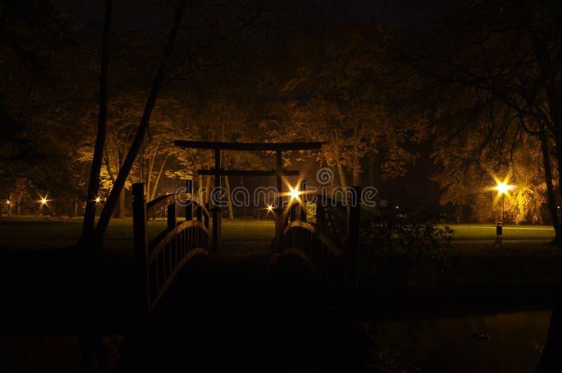 Park at night. stock image