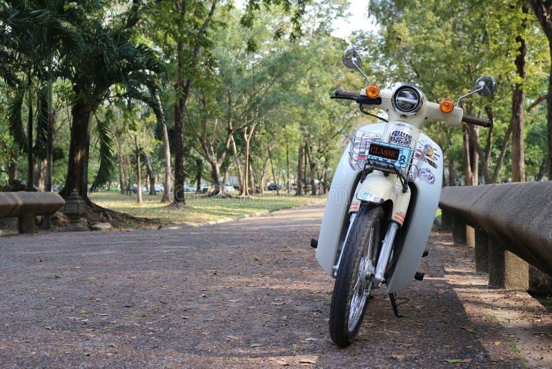 Park, ogród zielony, naturalny, motocykl fotografia stock