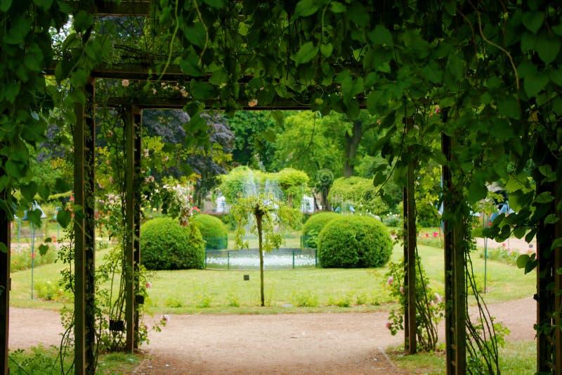 Park oin de stad van Nancy Frankrijk stock foto's