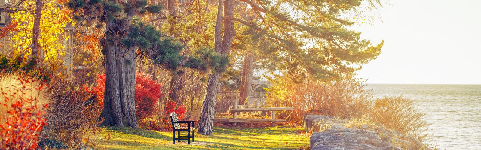 Park with one lonely old bench on bank shore near water lake. Web header banner for website royalty free stock photo