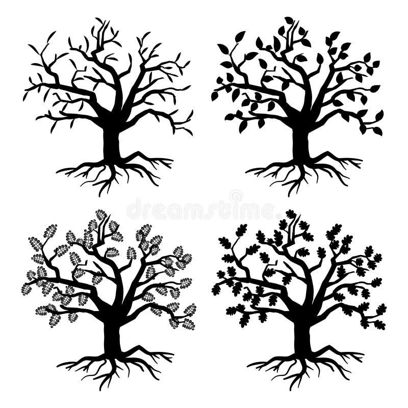 Park oude bomen Vectorboomsilhouetten met wortels en bladeren stock illustratie