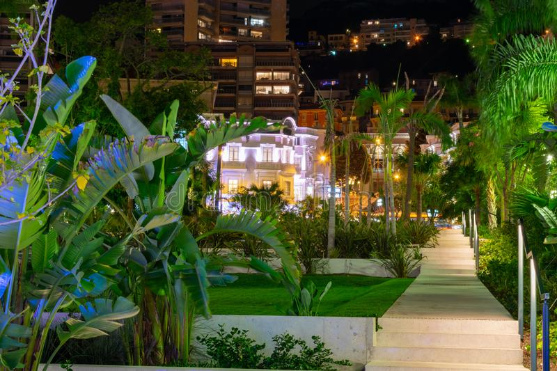 Park with palm trees at night time in Monaco stock photo