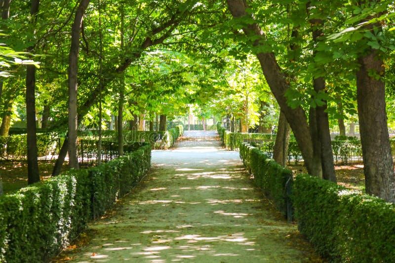 Park Parque de El Retiro, Madrid, Spanien stockbild