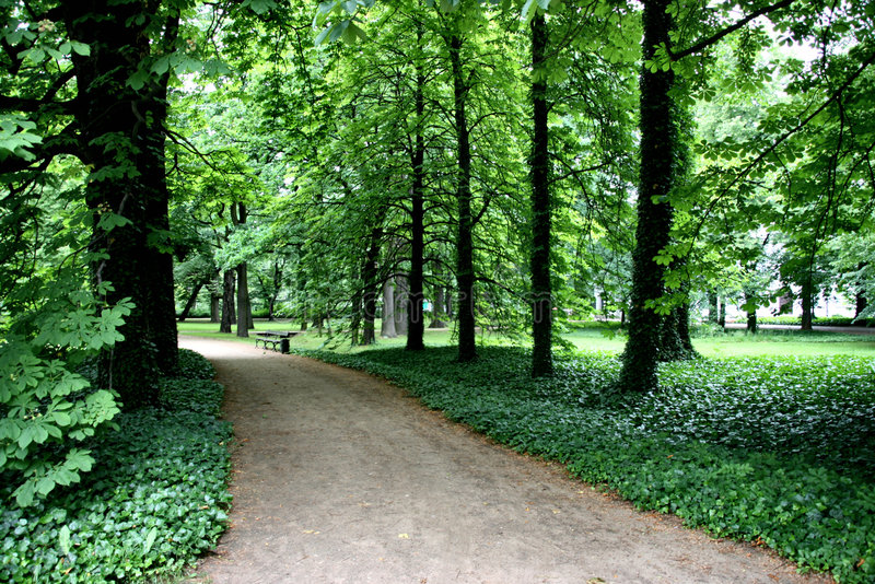 Park path and bench royalty free stock photo